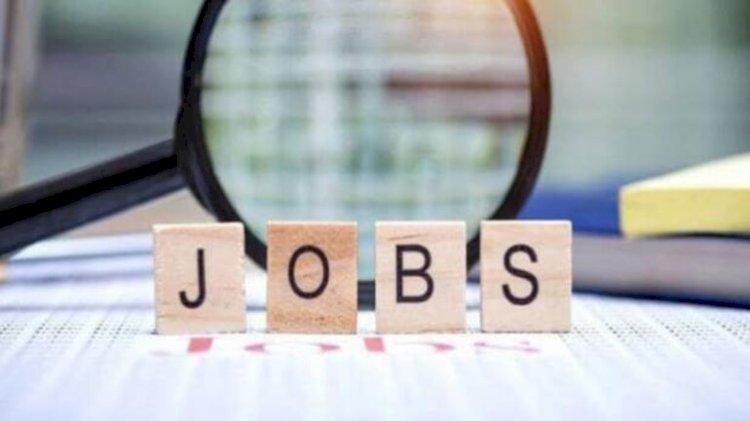 सरकारी नौकरी पाने का सुनहरा मौका, इन पदों पर निकली भर्ती, 60 हजार तक सैलरी